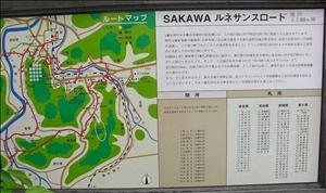 SAKAWA_t.jpg